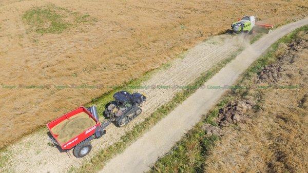 Moisson du Colza 2016 | Claas Lexion 760 Montana & V930 & Caterpillar MT775E Stealth (noir) & Perard X-Flow