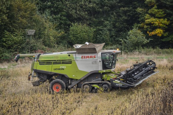 Moisson de Tournesol 2016 | Claas lexion 770 TT & Mac Don 12.20m | SARL Lefort