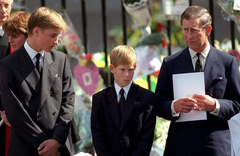 PRINCE WILLIAM ET  HARRY