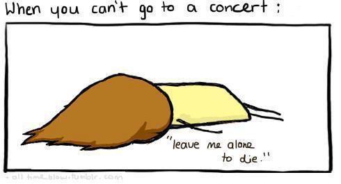 Quand tu ne peux pas aller au concert des Boys :