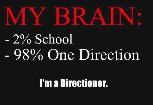 Mon cerveau :
