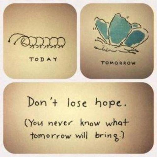 Ne perd pas espoir...