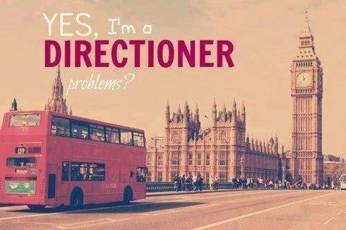 Yeah I'm a Directioner !