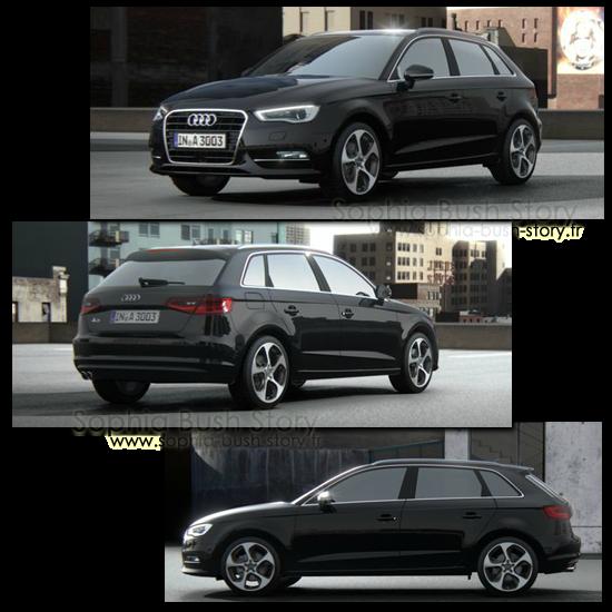 Audi A3 TDI En octobre 2010, Sophia décide de changer de voiture et achète une Audi A3 TDI noire,élue voiture verte de l'année 2010.