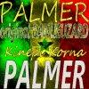palmerdioufyfire