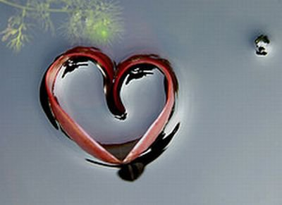 ........................................THE..BIG..LOVE..!!!!!!!.......................