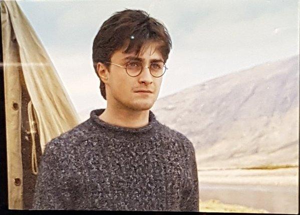 La famille Potter
