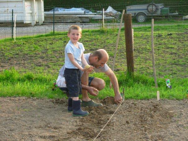 Le 24.05.2012 hier soir on à fini de planté dans le jardin
