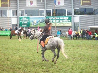 Nos concours 2011