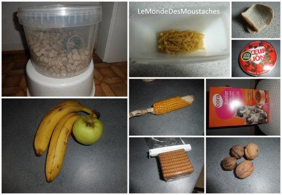 Alimentation et litière
