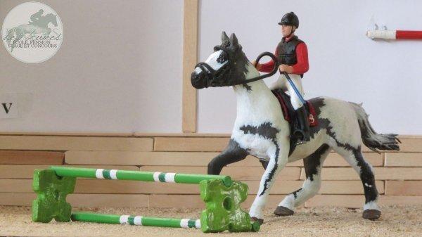 Un cheval de passage