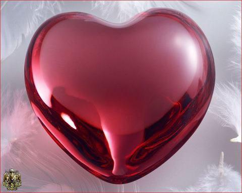 le vrai amour,c'est quand ton coeur et ton esprit parle le même langage!!!!!