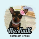 Photo de nintendogs-neskuik
