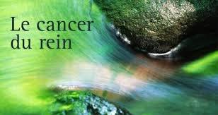 le cancer du rein    tous ensemble on peu le combatre