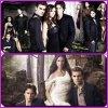 5 Mots en 5 com's qui vous font pensé a The Vampire Diaries...