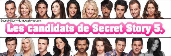 Bienvenue sur mon blog d'humour sur les candidats de Secret Story.