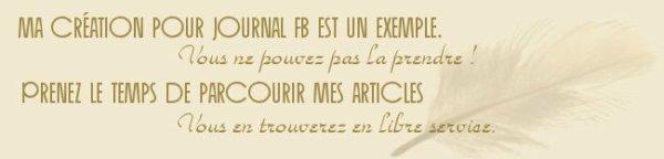 Exemple de bannière journal FB.