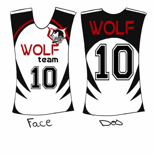 Projet Wolf team