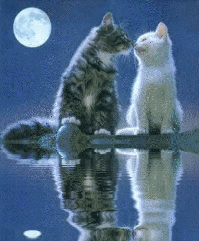.... La meilleure chose qui peut vous donner ... la vie est l'amitié .. ... La meilleure chose qui peut vous donner l'amitié est la vie ... ... La vie est l'amitié ........ ........ amitié et de la vie ...
