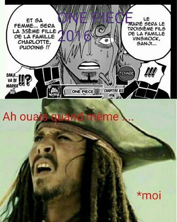 L'année One piece en 2016 WTF c'est quoi c'te blague !!! XD