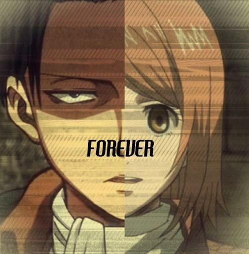 """Os: """"Forever"""" [ Levi x Petra numéro 9]"""