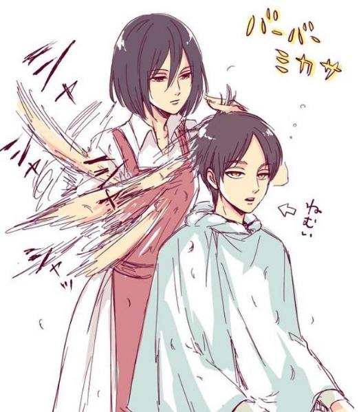 Merci à Mikasa de lui avoir coupé les cheveux *-*