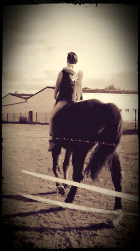 Être sur le dos d'un cheval, c'est être entre terre et ciel, loin des problème, c'est magique !
