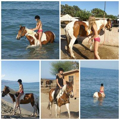 Ballade sur la plage + baignade :D Le 16/07 !