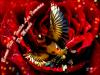 Une Pensé pour toutes les femmes du monde :  Bonne fête à toutes les femmes du monde la première ma mère <3 de : Bilel Kios #الحسون #المقنين #القرديل #سهره #Chardonnerert #Canari #Mulet #MuletOiseau #Oiseau #Birds #Animaux #Goldfich #Jilguero #Cardellino #καρδερίνα #Sakakuşu #Chien #Chat #Pigeon #Cheval #Science #Reptile #Poisson #Plantes #Hibiscus #Alger #Algérie #Tunisie #Maroc #ChardonneretGolden