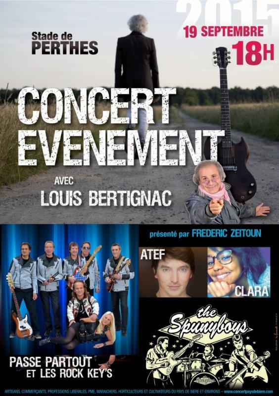 Festival Concerts de Perthes en Gatinais