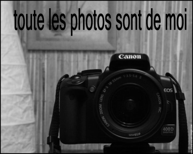 Blog de photo-graphie18