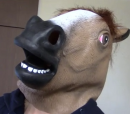 Pictures of youtubeHORSE