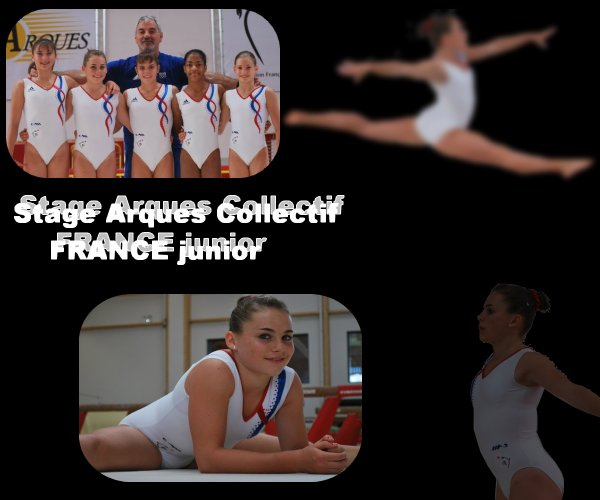Stage arques 2011