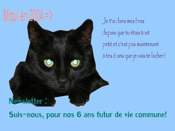 La Miau Newsletter !