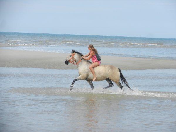 Séjour à la plage : summer 2012