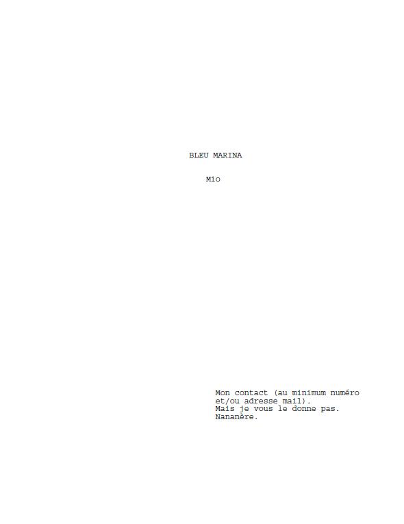 La mise en forme du script
