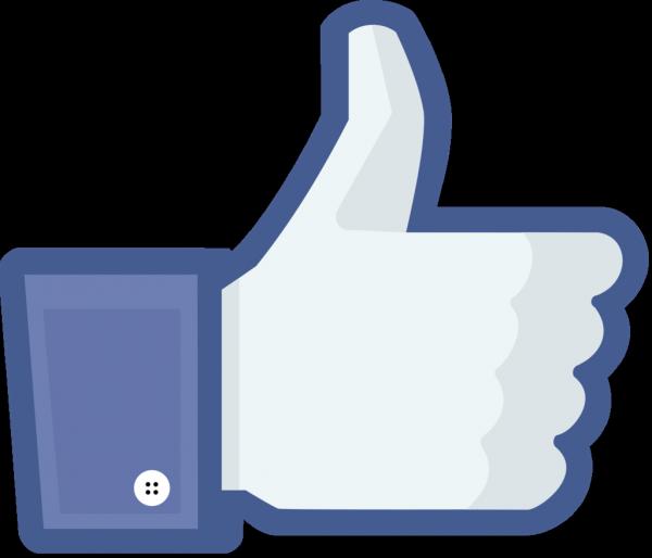 on ne vas pas se mentir si un jour facebook affiche combien de fois on vas sur le profil d certaines personnes ,nous seront tous foutus