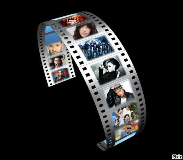 NRJ MUSIC AWARDS 2013-LE PALMARES !