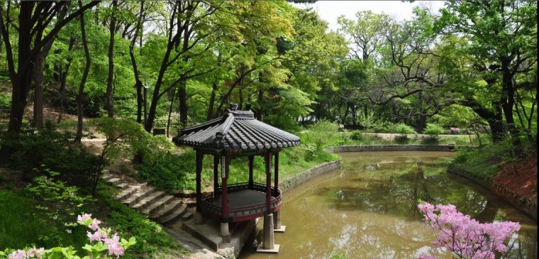 Les jardins Coréens