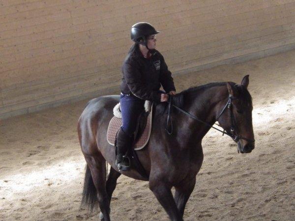 cours d'équitation en Suède avec Viaja, une jument de 5 ans ?