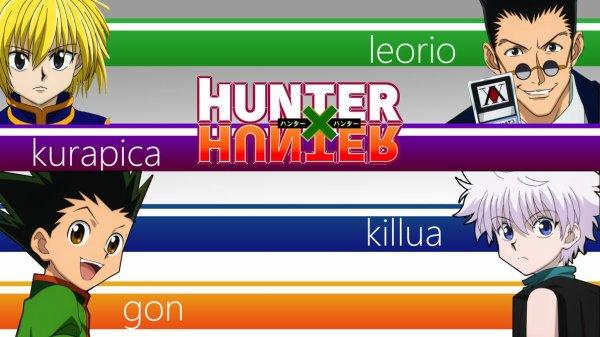 Hunter x Hunter (partie histoire)