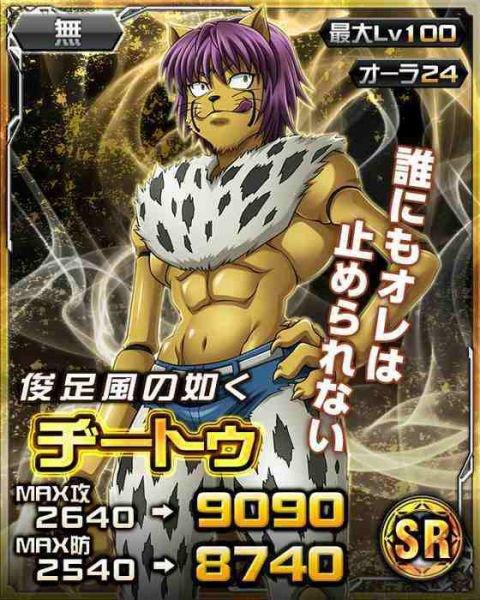 Hunter x Hunter Battle Card Collection