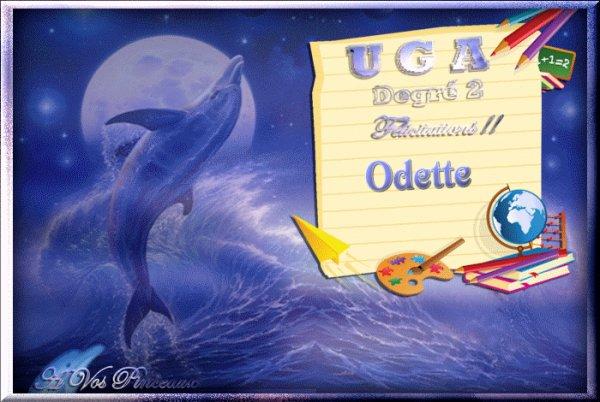 mes diplômes UGA sur le groupe à vos pinceaux