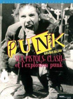 Sid Vicous : punk's not dead