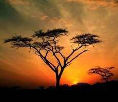 Un magnifique coucher de soleil :)