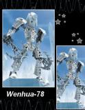 Photo de Wenhua-78