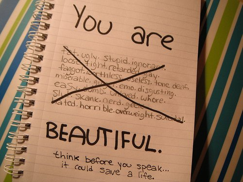 Je ne suis pas parfaite mais je tiens à préciser que (au grand dam de certains me semble-t-il) vous ne l'êtes pas non plus.