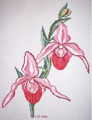 Tableau orchidées