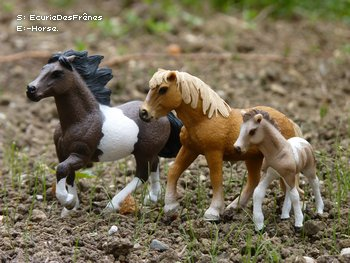Shooting Photo Schleich  ~ La famille islandaise