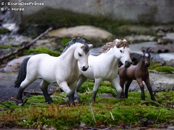 Shooting Photo Schleich  ~ La famille camarguaise